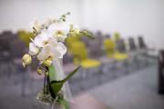 Orchidee im Standesamt.
